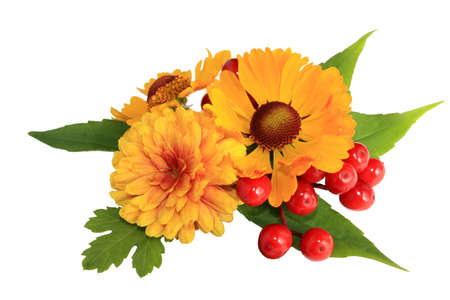 yellow flowers and red berries