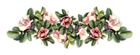 Vintage border of wild rose isolated on white background