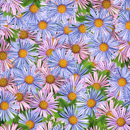 Square floral background with colorful daisies and leaves