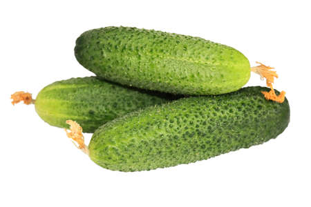 Three fresh young cucumbers close up isolated on white background