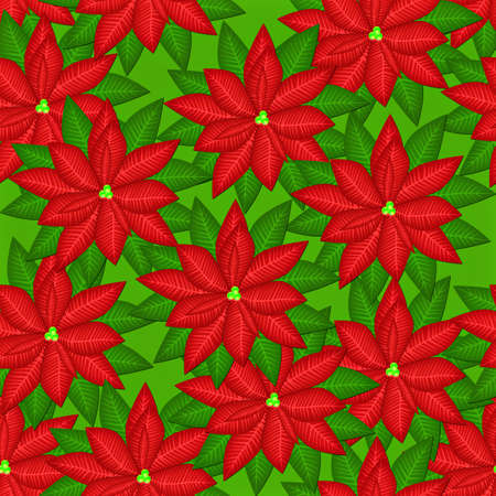 Abstract seamless background with red flowers blooming poinsettia Stock Photo