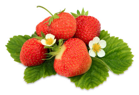 handful: Handful of a fresh strawberry isolated on a white background