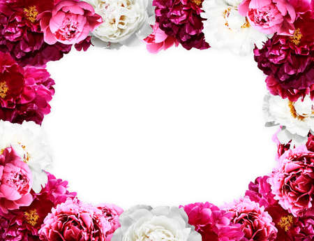 Decorative frame with natural blossoming different peonies