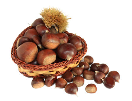 Large and small chestnuts in a basket isolated on a white background
