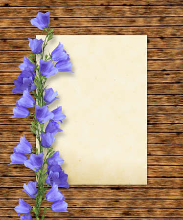 Wooden frame with a page of a paper and blossoming  bluebells