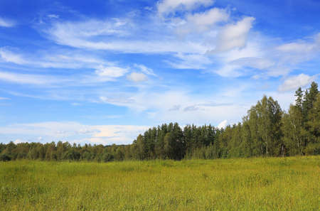 Beautiful rural landscape with a field and the blue sky Stock Photo
