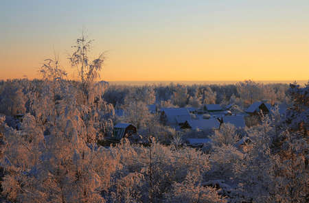 Morning winter landscape with village in a forest