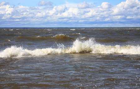 Summer sea landscape with a wave, Baltic sea