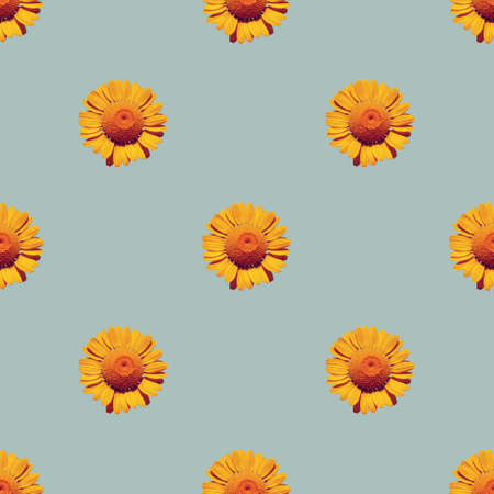 Seamless background with natural blooming yellow daisies, repeat pattern