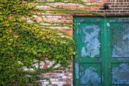 green door: the wall with green door