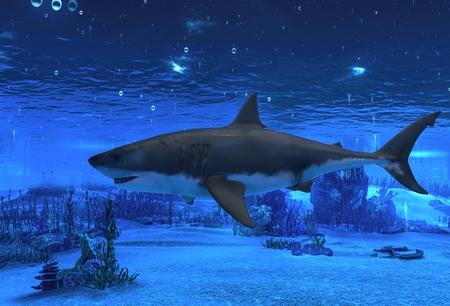 3D illustration great white shark swimming underwater Archivio Fotografico