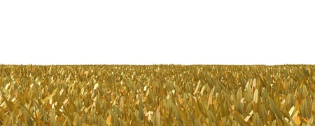 Autumn grass isolated on white background 3D illustration 스톡 콘텐츠
