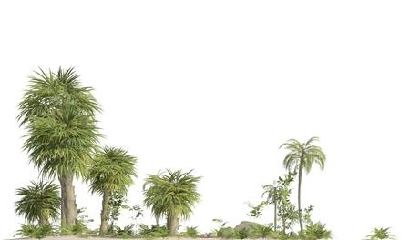 Trees of the mesozoic era isolated on white background 3D illustration