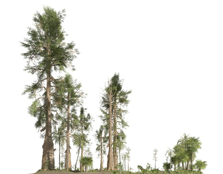 Forest of the mesozoic era isolated on white background 3D illustration Фото со стока