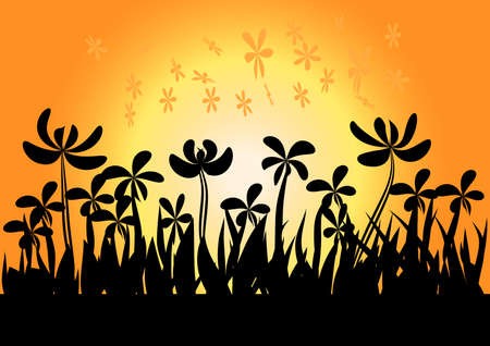 sundown: sundown background sunset and grass  flowers