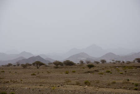 The landscape of the rocky desert in Oman or the UAE