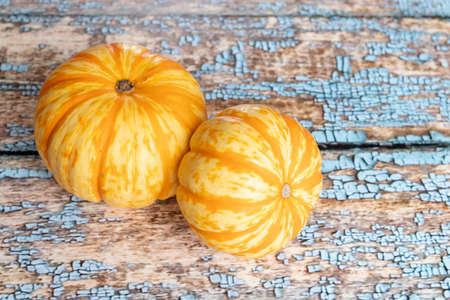 View of orange pumpkins