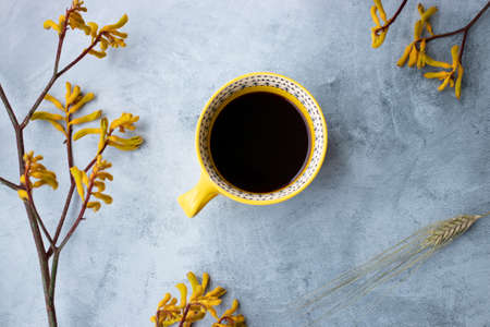 Yellow flowers kangaroo legs on marbled background and cup of yellow coffee