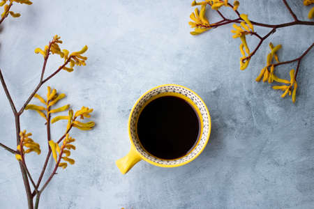 Yellow flowers kangaroo legs on marbled background and cup of yellow coffee 写真素材
