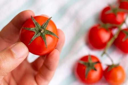 Hands holding cherries tomatoes