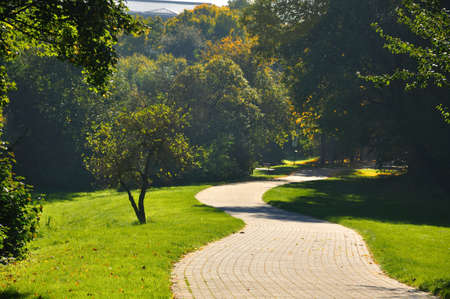 shady: Misterious shady green alley with trees in the park in Fulda, Hessen, Germany