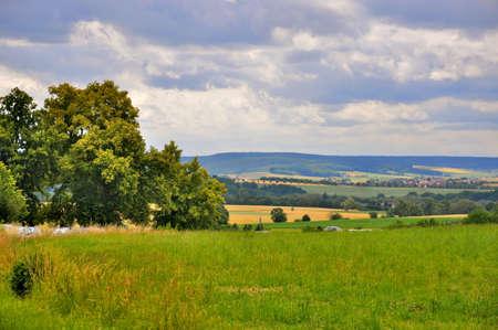 Schöne Landschaft (Felder) in der Nähe von Schloss Fasanarie Fulda, Hessen, Deutschland
