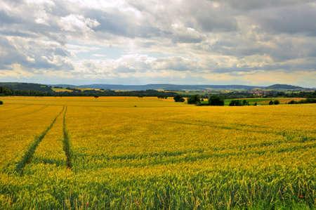 Beautiful landscape (fields) near Schloss Fasanarie in Fulda, Hessen, Germany Stock Photo - 13224798
