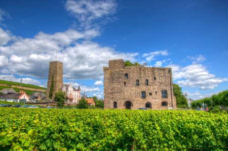 hessen: Vineyard near fortress Boosenburg, Ruedelsheim, Hessen, Germany Editorial