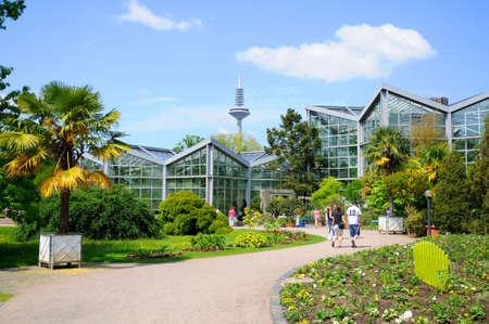 garten frankfurt, nature of palmen garten, frankfurt am main, hessen, germany stock, Design ideen