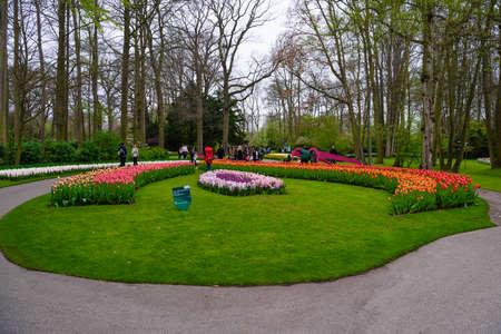 Blooming tulips in Keukenhof park, Lisse, Holland Netherlands