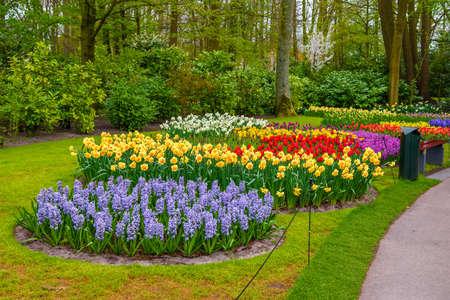 Tuilps und andere Blumen im Keukenhof Park, Lisse, Holland, Niederlande Lizenzfreie Bilder