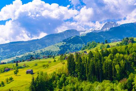 Wooden cottage houses on green fields, Grabs, Werdenberg, St. Gallen Switzerland Standard-Bild - 133559560