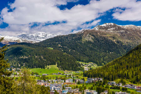 Alps Mountains covered with pine forest, Davos,  Graubuenden, Switzerland