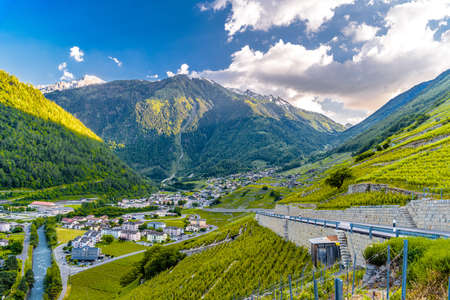 Wineyard in Swiss Alp mountains, Martigny-Combe, Martigny, Wallis, Valais Switzerland Standard-Bild - 133544721