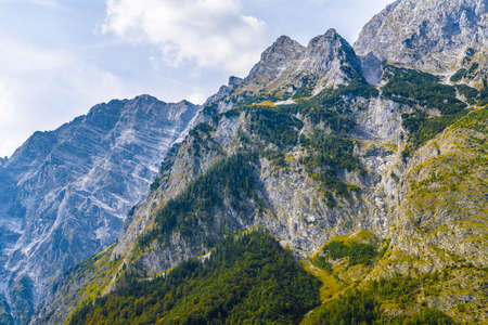 Alps mountains covered with forest in Berchtesgaden National Park, Bavaria, Germany