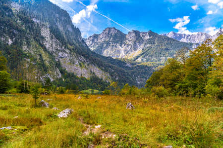 Grass meadow in Koenigssee, Konigsee, Berchtesgaden National Park, Bavaria Germany