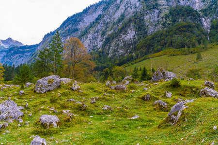 Boulder stones in Koenigssee, Konigsee, Berchtesgaden National Park, Bavaria Germany