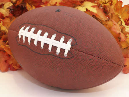 Footbal sits in front of Fall leaves.