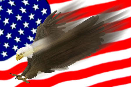 American eagle swooshes across US flag background.