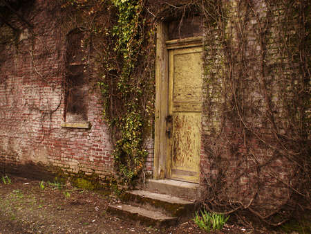 Yellow door in old stone building lying in ruins as nature overruns the place.