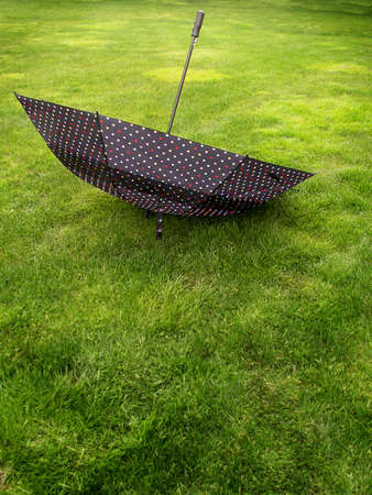 Large black umbrella with colored poka dots stands upside down on lush green lawn. Standard-Bild
