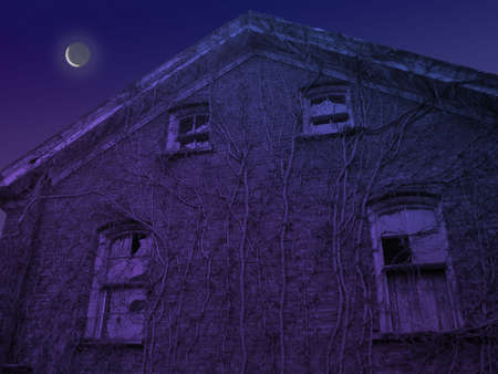 Crescent moom rising over top of old academy in ruins with vines creeping up old bricks and broken windows.