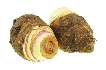 esculenta: Close up Taro or Colocasia esculenta is root isolated on white background.
