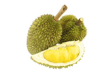Durian ripe and part with spikes isolated on white background. Stock Photo
