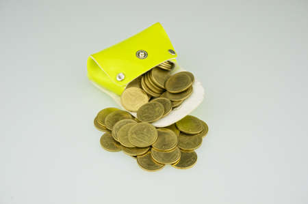 gush: Light green pocket has gold coin gush with white background. Stock Photo