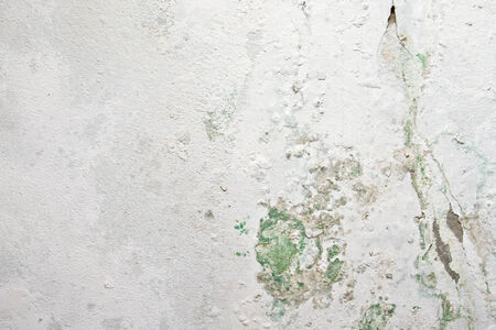 Peeling paint and moss on old concrete wall use for background texture. photo