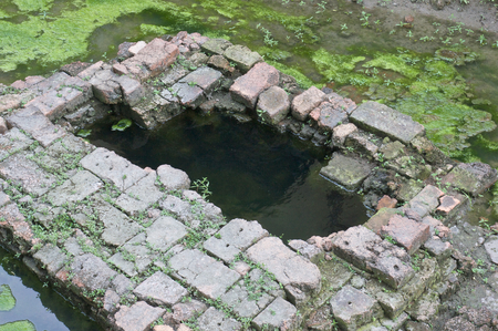 well made: Green algae are around of ancient well made of bricks.