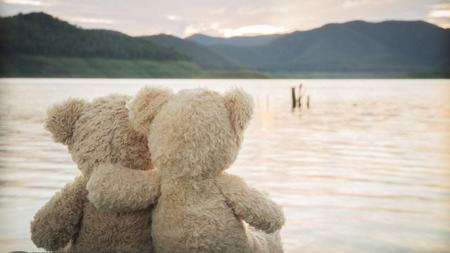 teddybears relaxing overlooking lake and mountains