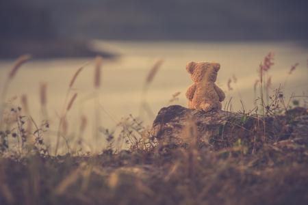 The silhouette of teddy bear sitting alone, concept of lonely Zdjęcie Seryjne