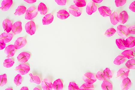 Flat lay Fresh bougainvillea flower isolated on white background